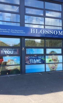 Blossom Cosmetic Laser Clinic